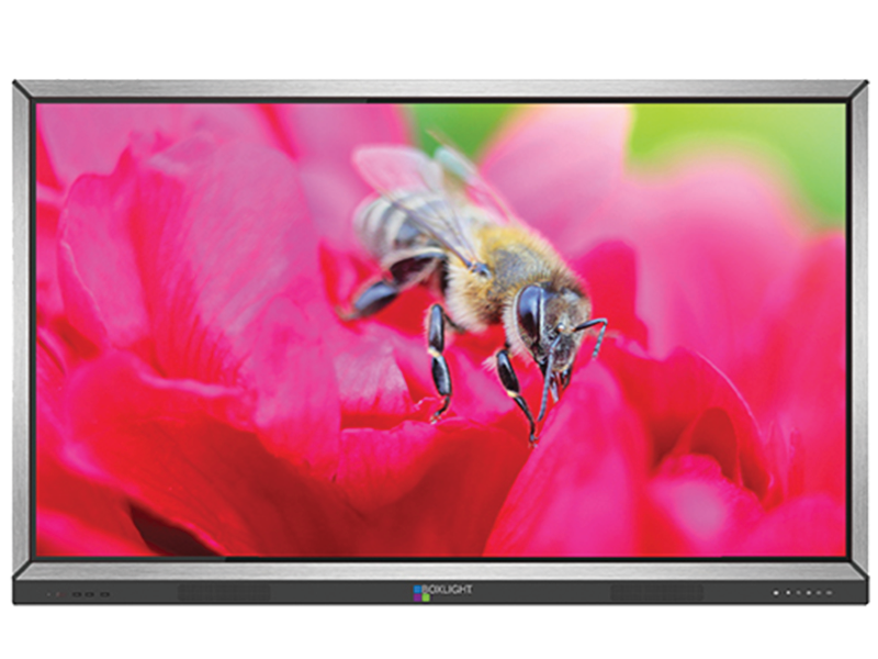 Boxlight MimioDisplay 862